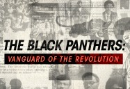 The Black Panthers: Vanguard of the Revolution - School Edition