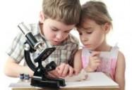 Core Science Series: Comprehending and Understanding Science
