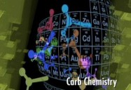 Carbs: Elements of Human Nutrition