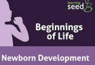 Newborn Development: Beginnings of Life
