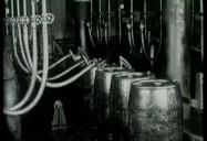 Leaded Gasoline: Trading IQ for Octane