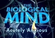 Acutely Anxious