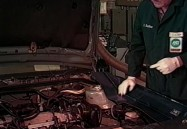 Auto Shop Safety
