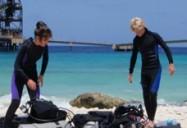 Shore Dive/Reef Survey - Aquateam Series (Episode 8)