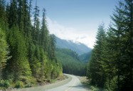 Vancouver Island: Undiscovered Vistas Series
