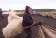 Northern Europe: Arctic, with Bruce Parry
