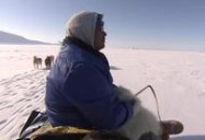 Greenland: Arctic, with Bruce Parry