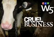 Cruel Business: W5