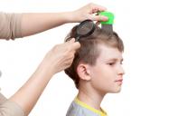 Head Lice Solutions (Canada AM)