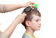 Head Lice Solutions (Canada AM)
