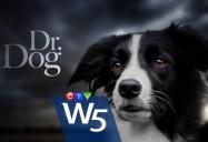 Dr. Dog: W5