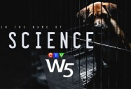 In the Name of Science: W5