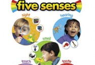 The Five Senses Series