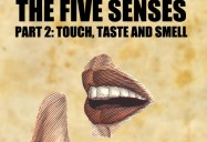 The Five Senses: Taste, Touch and Smell