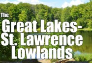 The Great Lakes - St. Lawrence Lowlands