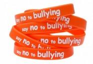 Bullying Awareness Playlist (8 Programs)