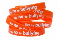 Bullying Awareness Playlist (8 Programs)