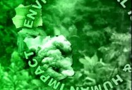 Environmental Issues & Human Impact