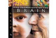 Secret Life of the Brain 3PK DVD