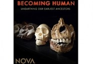 Becoming Human Unearthing Our Earliest Ancestors: NOVA