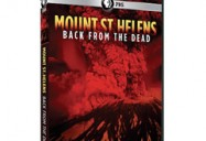Mount St. Helens: Back From the Dead