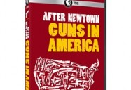 After Newtown: Guns in America