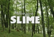 NOVA: Secret Mind of Slime