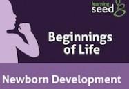 Newborn Development: Beginnings of Life Series