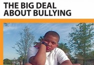 BIG DEAL ABOUT BULLYING, THE