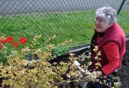 The Wild Garden - Episode Three: Ageless Gardens Series