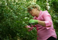 Gardens Grow Community - Episode Four: Ageless Gardens Series