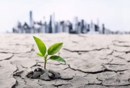 Sustainability and Climate Change Series