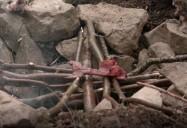 Pit Oven: Merchants of the Wild (Season 2, Ep. 11)