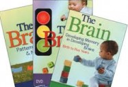 The Brain DVD Series