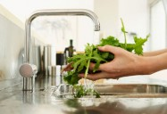Food Safety: It's in Your Hands