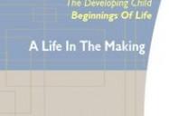 PreNatal Development: A Life in the Making