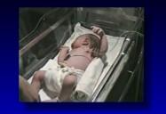 The Newborn - Development & Discovery: The Developing Child Series