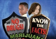 Totally True Facts About Marijuana