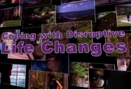Coping with Disruptive Life Changes