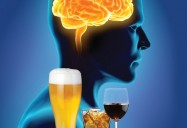 Alcohol and the Developing Brain