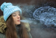 Nicotine, Vaping and the Developing Brain