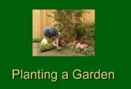 Landscape Plant Selection, Soil Preparation & Planting