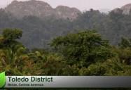 Organic Fair Trade Farming/Impact of Climate Change on Farming: Down2Earth (Ep 110)