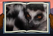 Lemur: Big Bear and Squeak Series