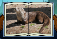 Otter: Big Bear and Squeak Series