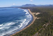 Pacific Rim Reserve National Park: A Park For All Seasons Series
