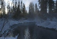 Liard River Hot Springs Provincial Park: A Park For All Seasons Series