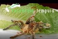 Tarantula Tempura: Bug Bites Series