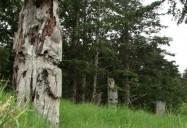 Gwaii Haanas National Park: A Park For All Seasons Series