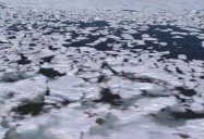 Wapusk National Park: A Park For All Seasons Series